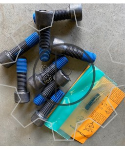 CF-A-200-E - Centaflex A Size 200  - SET of bolts _ Original - genuine CENTA
