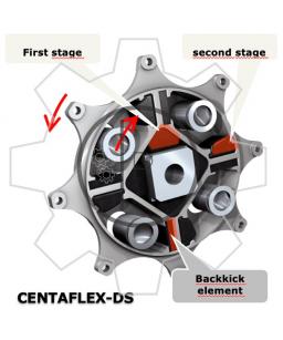 Centaflex DS complete coupling    /    Original - genuine CENTA product